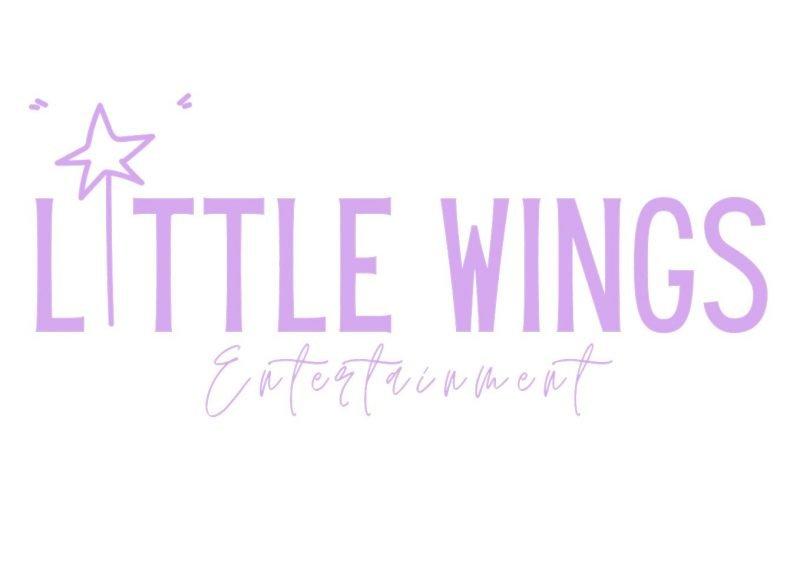 Little Wings Entertainment – Kids Party Entertainment