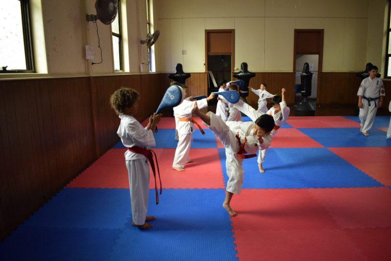 Dulwich Hill Karate Club